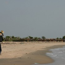 Man collecting wood on beach